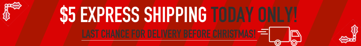 Holiday Shipping Special