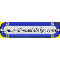 Silicone Intakes