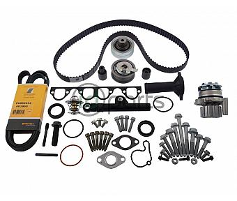 High Mileage Timing Belt Kit (ALH)