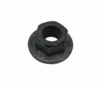 Coolant Pipe Nut