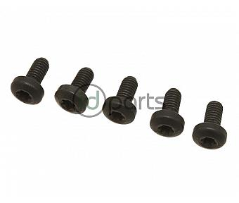 Fuel Filter Bolt Set (BRM)(CBEA)(CJAA)
