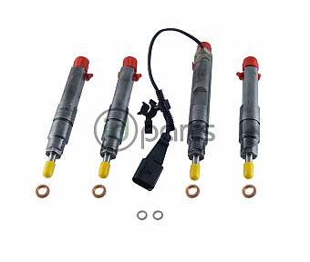 Upgraded Complete Injectors w/ Upgraded Nozzles