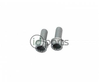 EGR Cooler Pipe Bolt Pair (A4)
